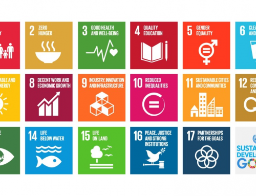 11 THINGS YOU SHOULD KNOW ABOUT THE Sustainable Development Goals (SDGs)